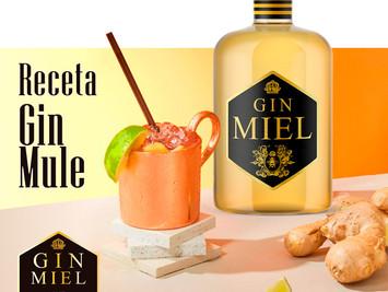 Cocktail de este mes: GIN MULE.