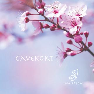 Gavekort - Hudpleier Ina Rasdal