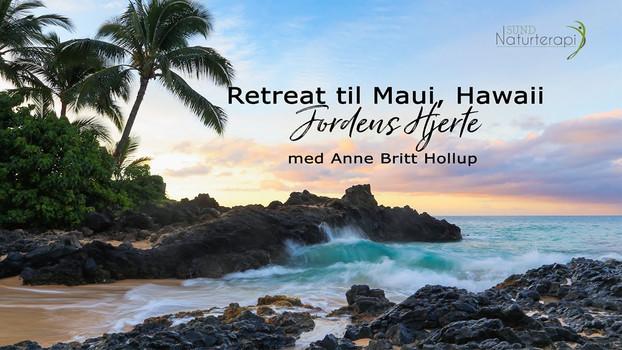 Promovideo Retreat - Sund Naturterapi