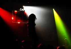 Um Show de Jantar 2009