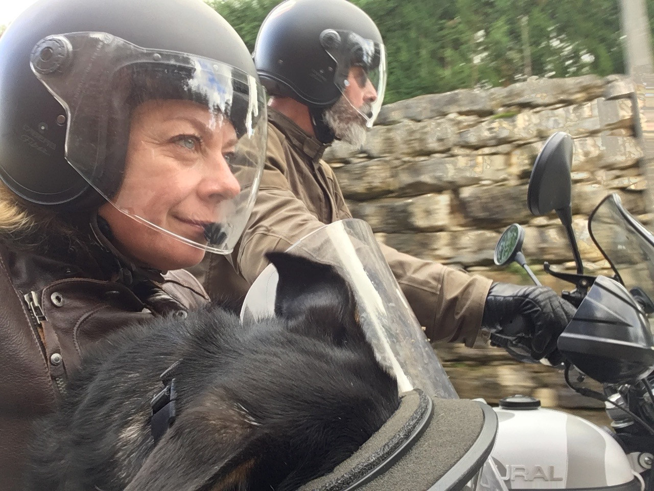 Exploring in a sidecar is social and satisfies our adventurous side. We all love it.