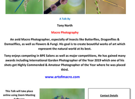 Tony North's Macro Photography Wed. 29th April 2020