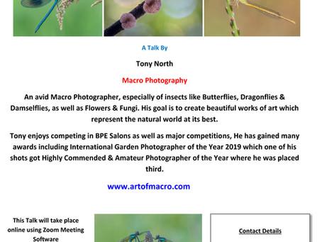 Tony North's Macro Photography Wed. 29th April 2020