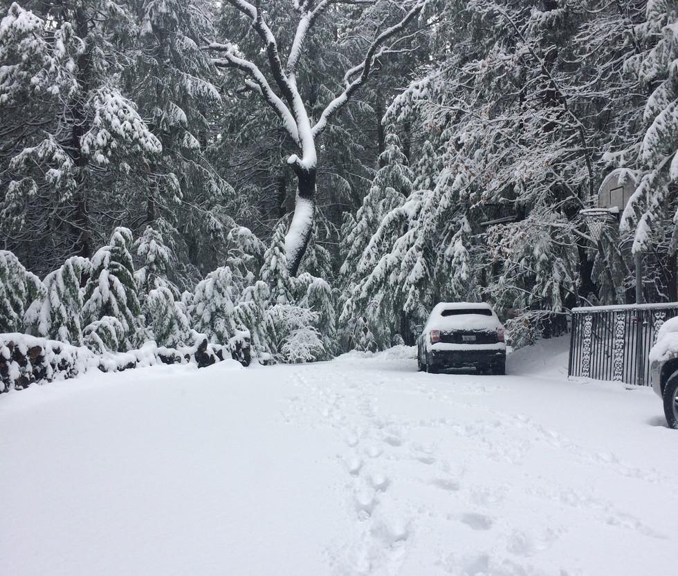 Post-snow