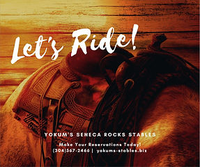 Yokum's Stables