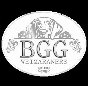 BGG Weimaraners