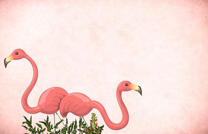 flamingo-4122866_1280.jpg