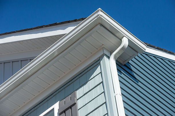 Colonial white gutter guard system, fasc