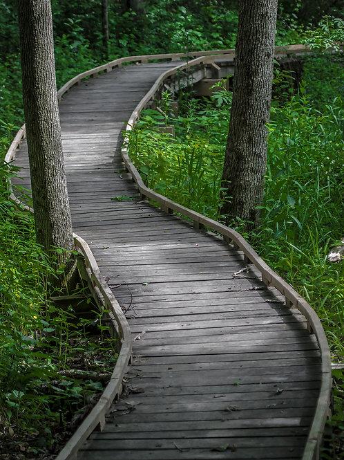 Bowers Path