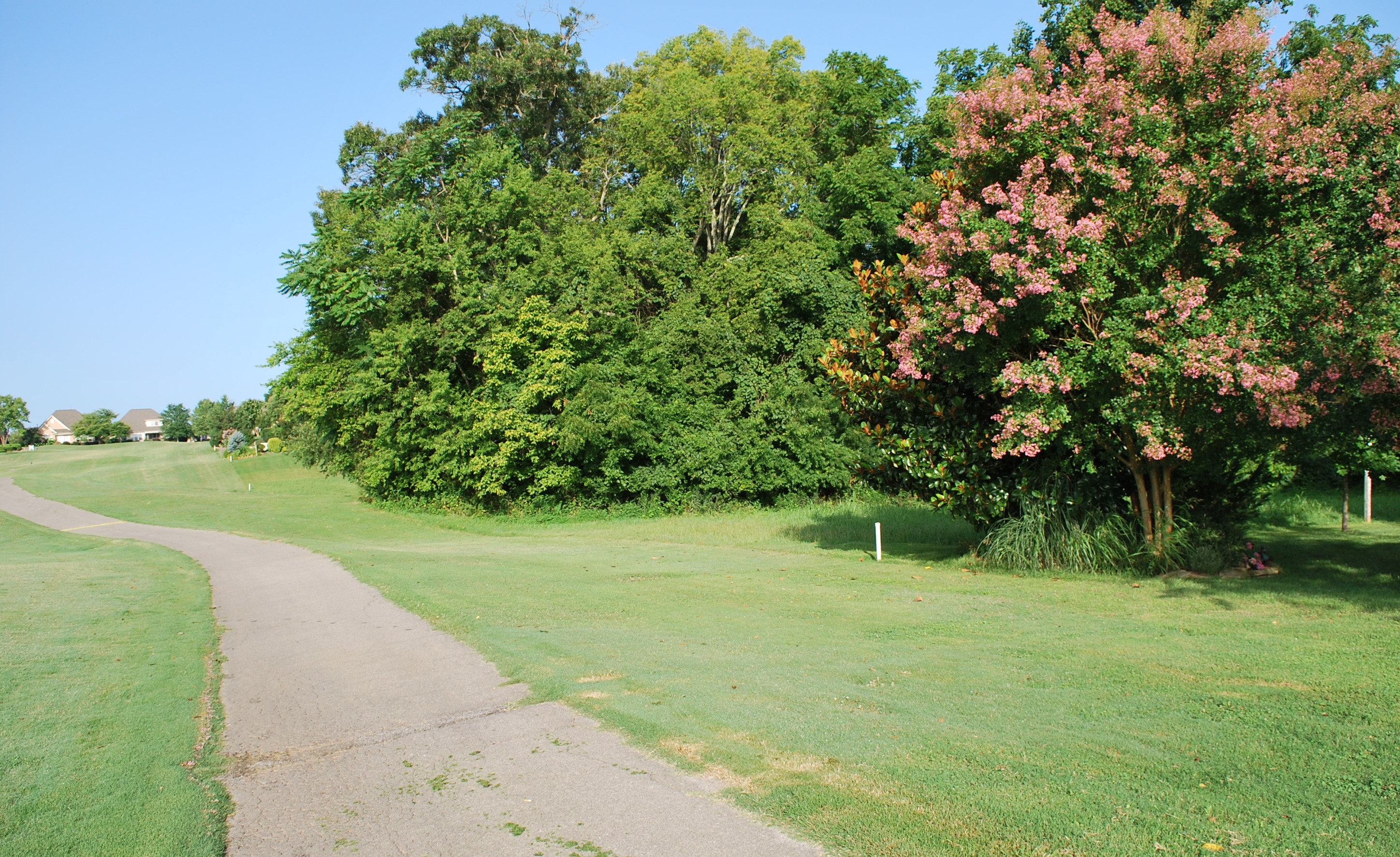 Backing to golf course III