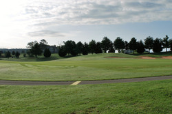 Golf Course View I