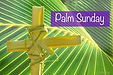 Palm Sunday Photo.jfif