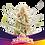 Thumbnail: FEM- RAINBOWS X2 UNIDADES