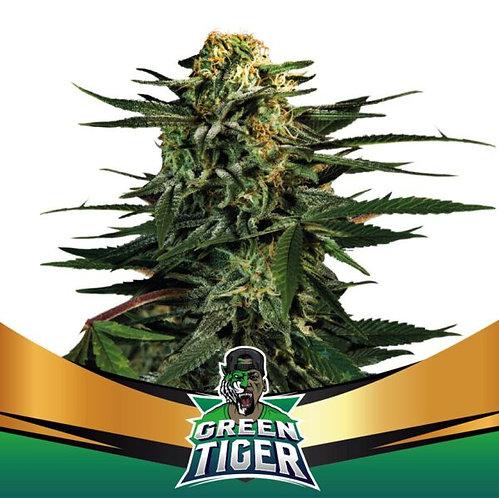 FEM (FF) - GREEN TIGER X7 UNIDADES