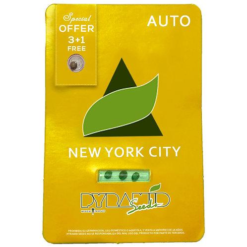 AUTO - NEW YORK CITY X3 UNIDADES + 1 GRATIS