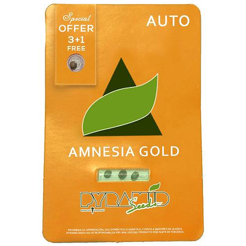AUTO - AMNESIA GOLD X3 UNIDADES + 1 GRATIS