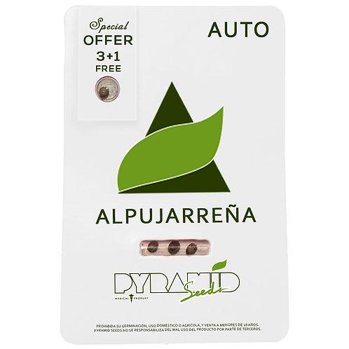 AUTO - ALPUJARREÑA X3 UNIDADES + 1 GRATIS