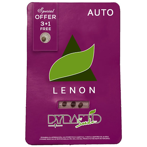 AUTO - LENNON X3 UNIDADES + 1 GRATIS