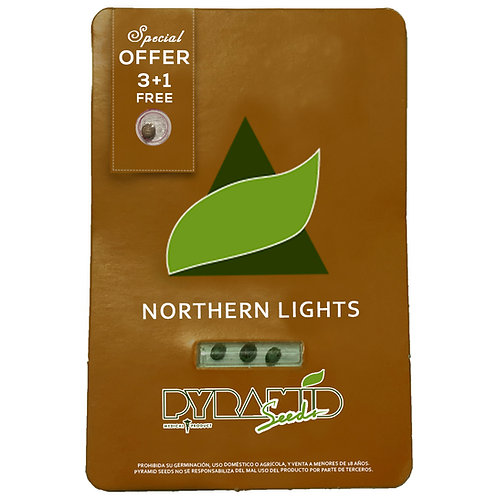 FEM - NORTHERN LIGHTS X3 UNIDADES + 1 GRATIS