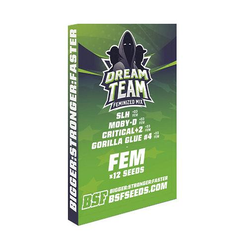 FEM (MIX) - DREAM TEAM X12 UNIDADES
