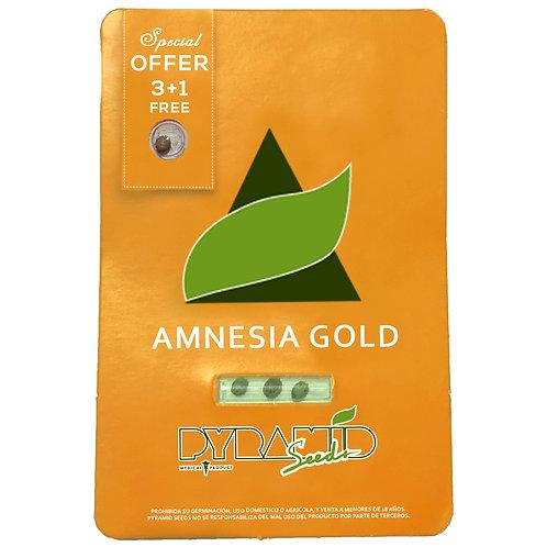 FEM - AMNESIA GOLD X3 UNIDADES + 1 GRATIS