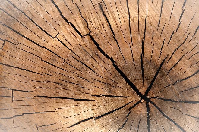 lumber-84678_1920_edited.jpg