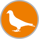 Taubenabwehr