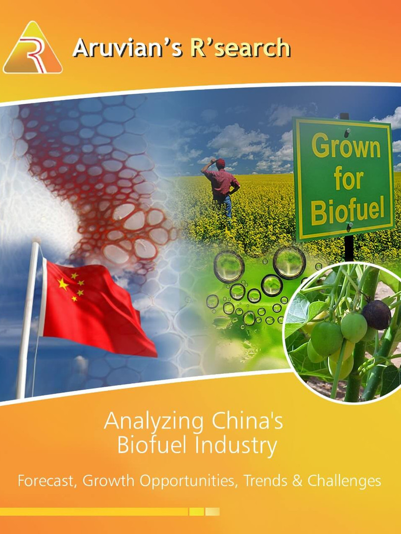 Analyzing China's Biofuel Industry