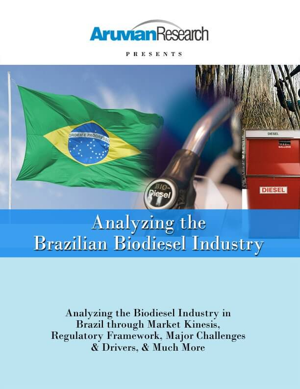 Analyzing the Brazilian Biodiesel Indust