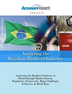 Analyzing the Brazilian Biodiesel Indust