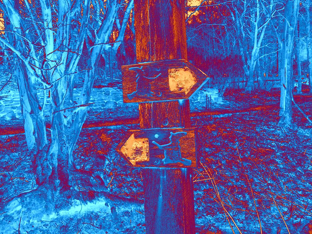 April 2015 Pendle Hill copy.jpg