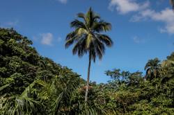 El Valle, Dominican Republic