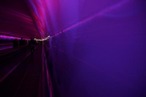 Light Tunnel - Purple