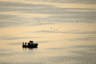 Fishermen at Dawn