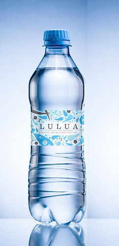 330ml X 40 bottle  Carton       كرتون مياه ٣٣٠مل/٤٠قارورة