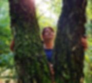 przepływ leśnej energii