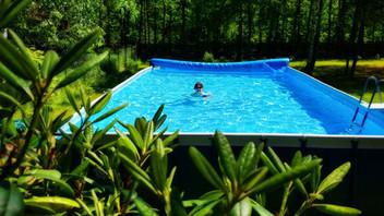 Otwarcie basenu w AgroRoma