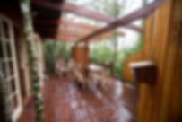 Porcupine Cabin Fern gully Knysna (7).JP