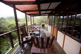 Fern Cabin Fern gully Knysna (2).JPG