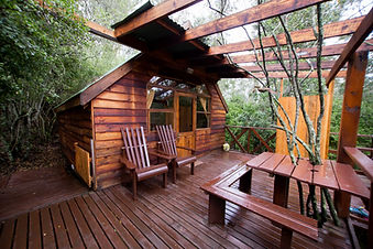 Hoopoe Cabin Fern gully Knysna (5).JPG