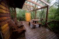 Hoopoe Cabin Fern gully Knysna (2).JPG