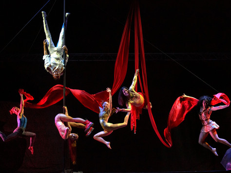 'Luminosa': A Circus Cabaret with Lost in Translation
