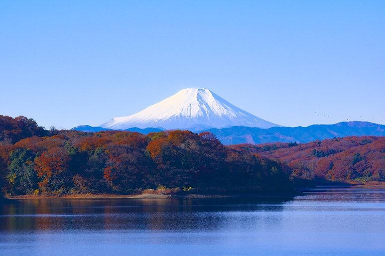 japan-1706942_1920.jpg