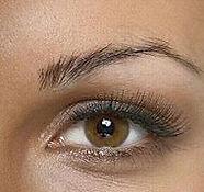 brows%206_edited.jpg