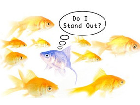 Standing Out From the Crowd: Differentiating Your Business