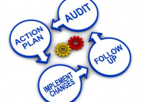 How do you perform an audit on your business?