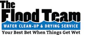 The Flood Team Logo.jpg