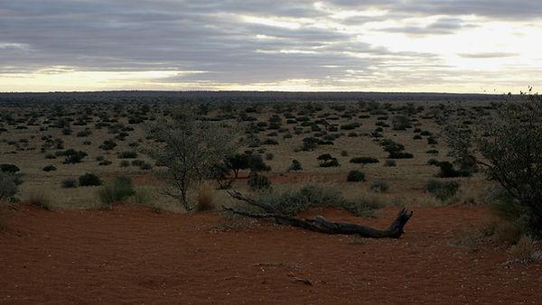 Tswalu Nature Reserve.jpg