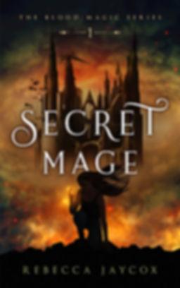 Secret Mage cover.jpg