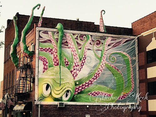 Downtown Canton Squid